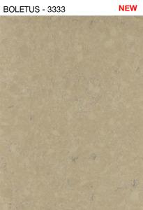 boletus - 3333